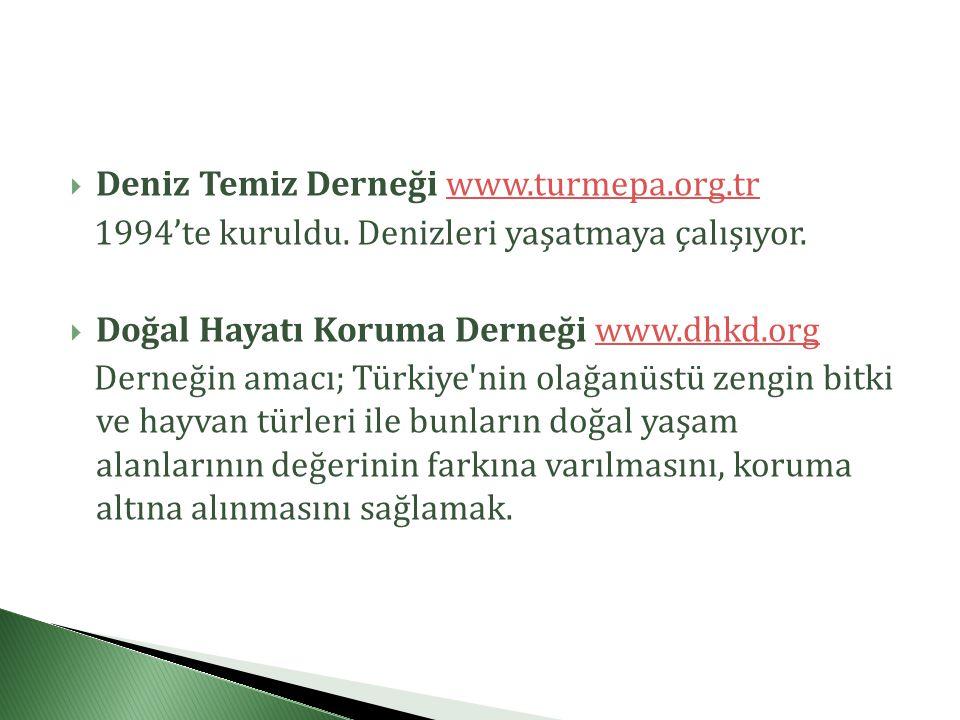 Deniz Temiz Derneği www.turmepa.org.tr