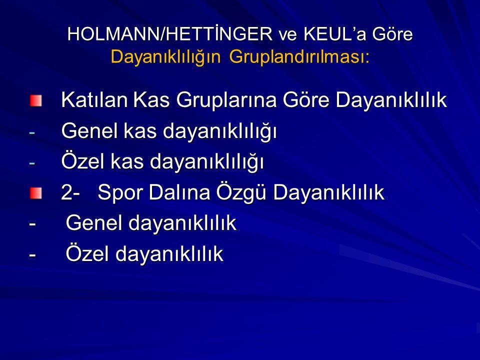 HOLMANN/HETTİNGER ve KEUL'a Göre Dayanıklılığın Gruplandırılması: