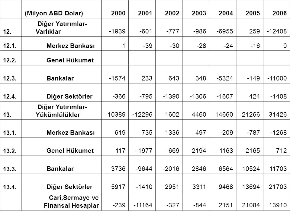 Diğer Yatırımlar-Varlıklar -1939 -601 -777 -986 -6955 259 -12408