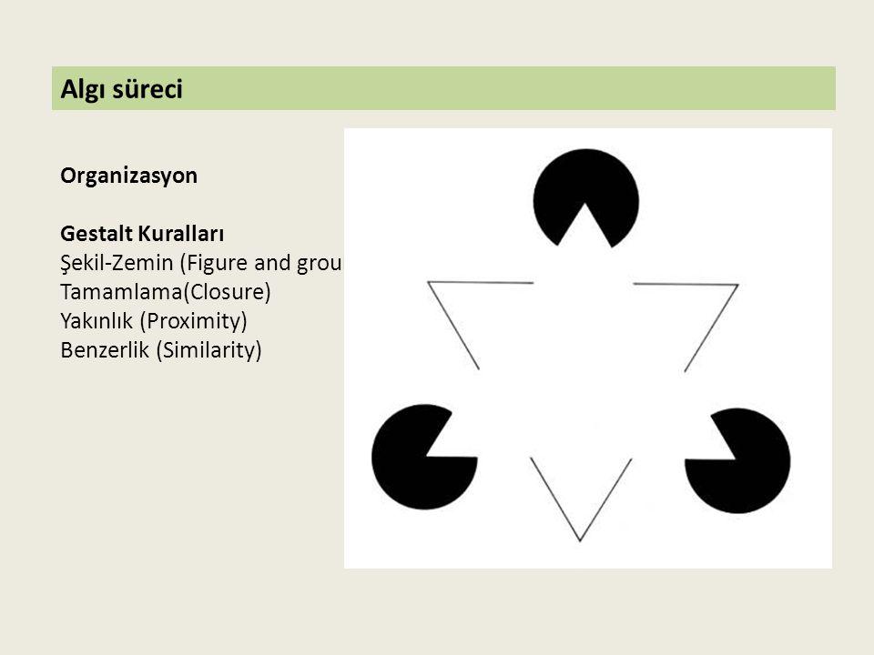 Algı süreci Organizasyon Gestalt Kuralları