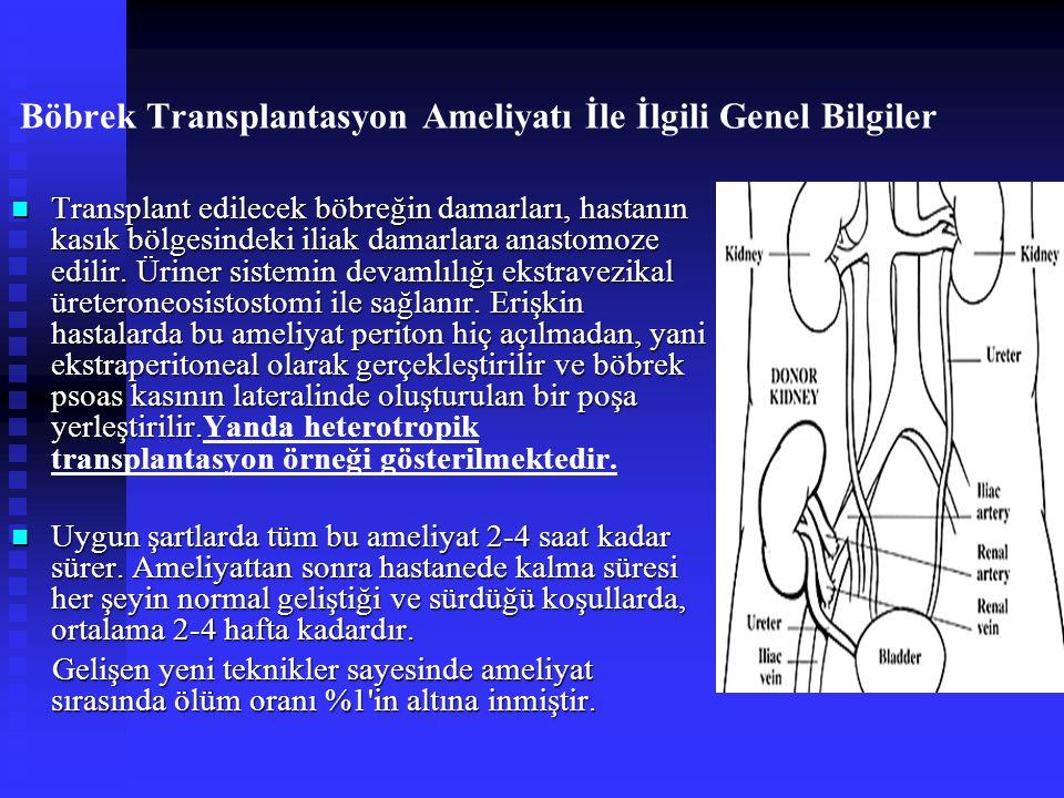 Böbrek Transplantasyon Ameliyatı İle İlgili Genel Bilgiler