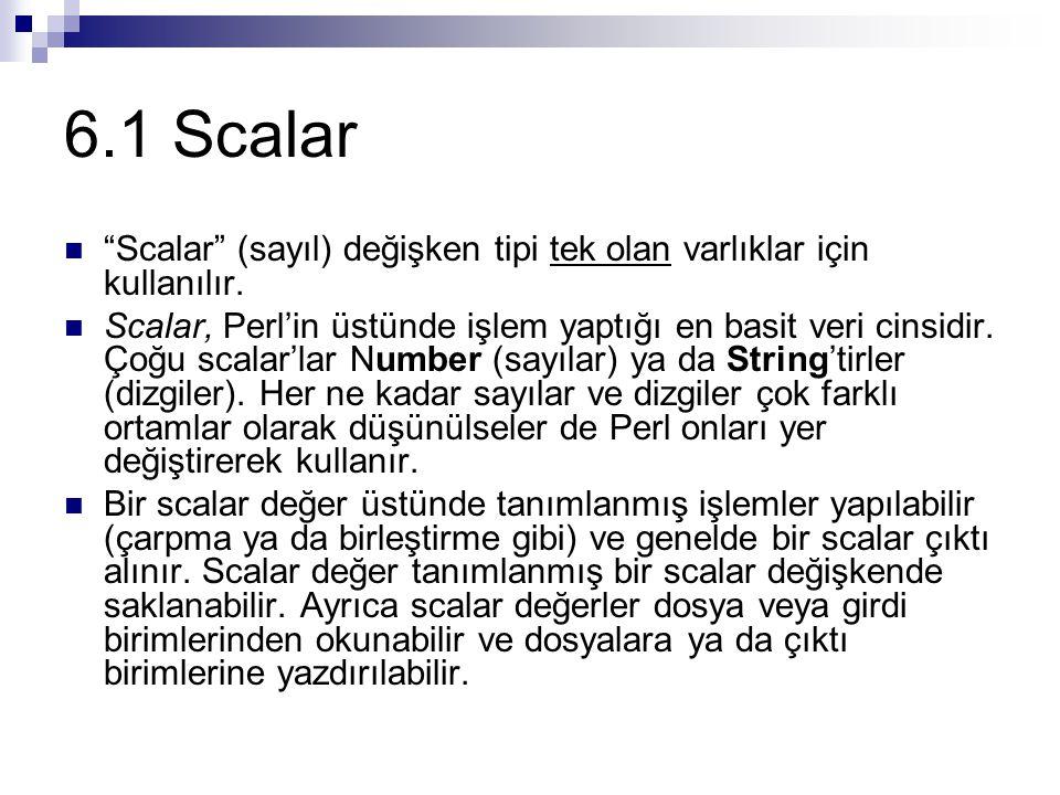 6.1 Scalar Scalar (sayıl) değişken tipi tek olan varlıklar için kullanılır.