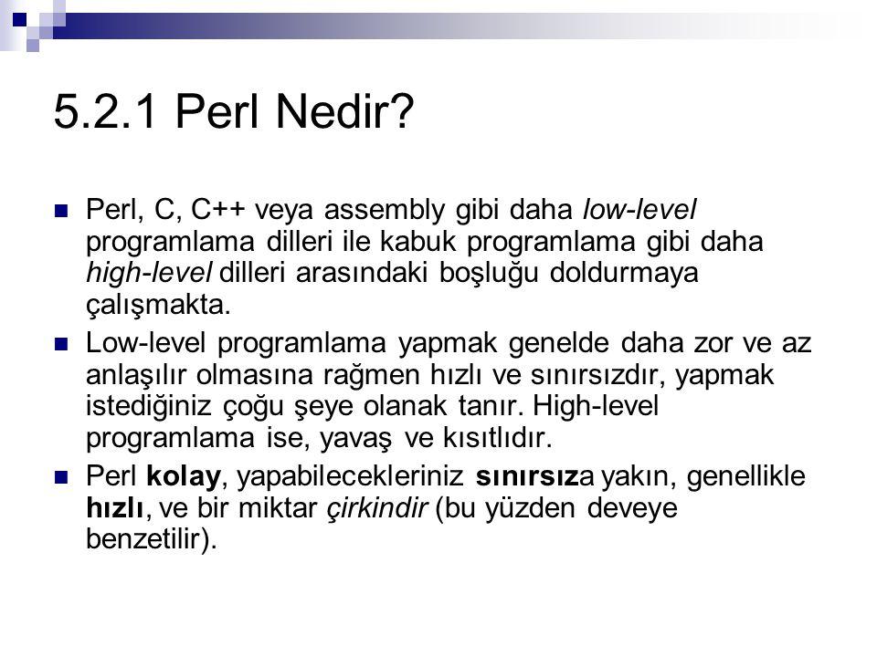 5.2.1 Perl Nedir