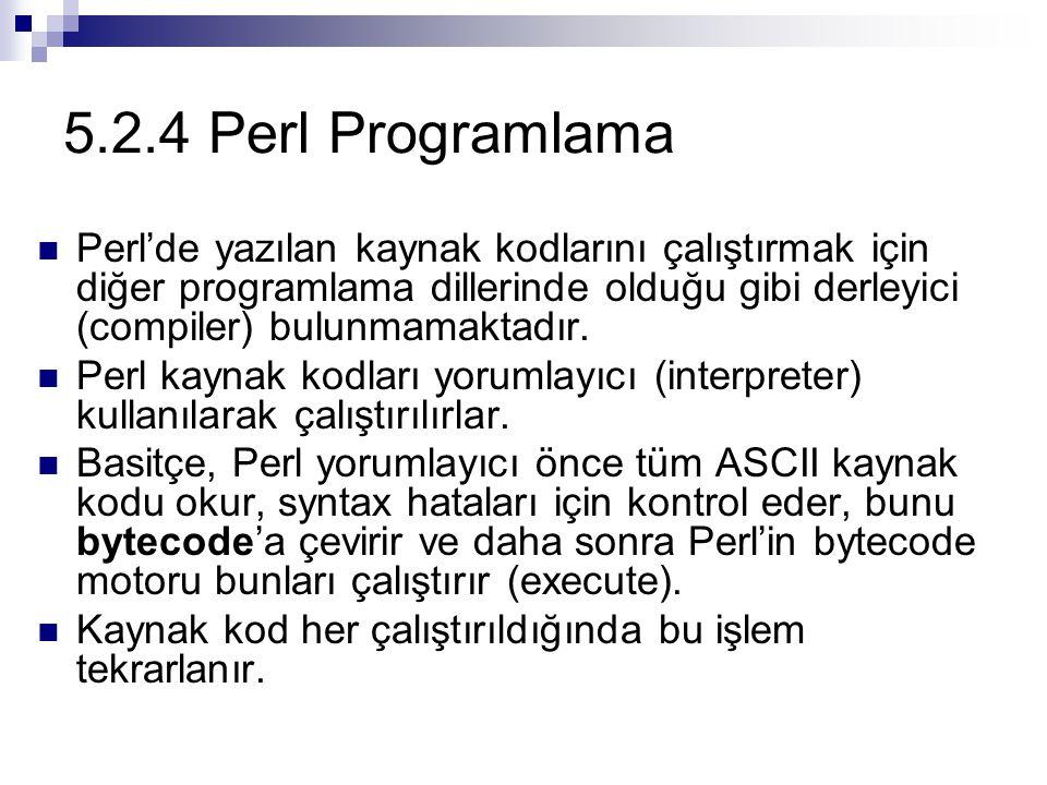 5.2.4 Perl Programlama