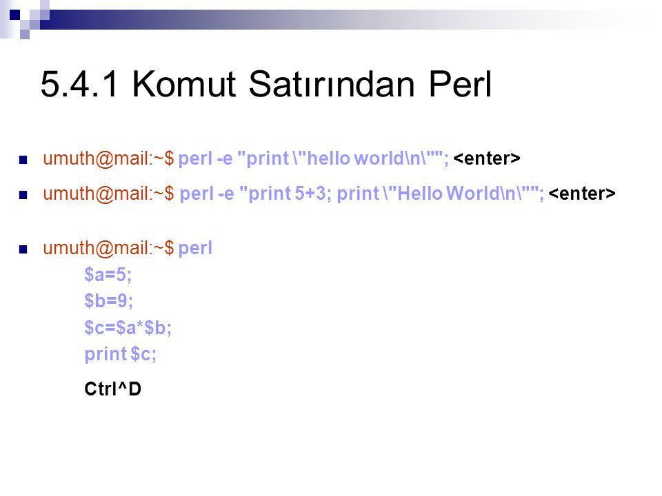 5.4.1 Komut Satırından Perl Ctrl^D