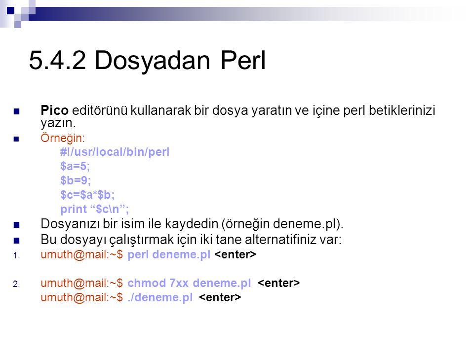 5.4.2 Dosyadan Perl Pico editörünü kullanarak bir dosya yaratın ve içine perl betiklerinizi yazın. Örneğin:
