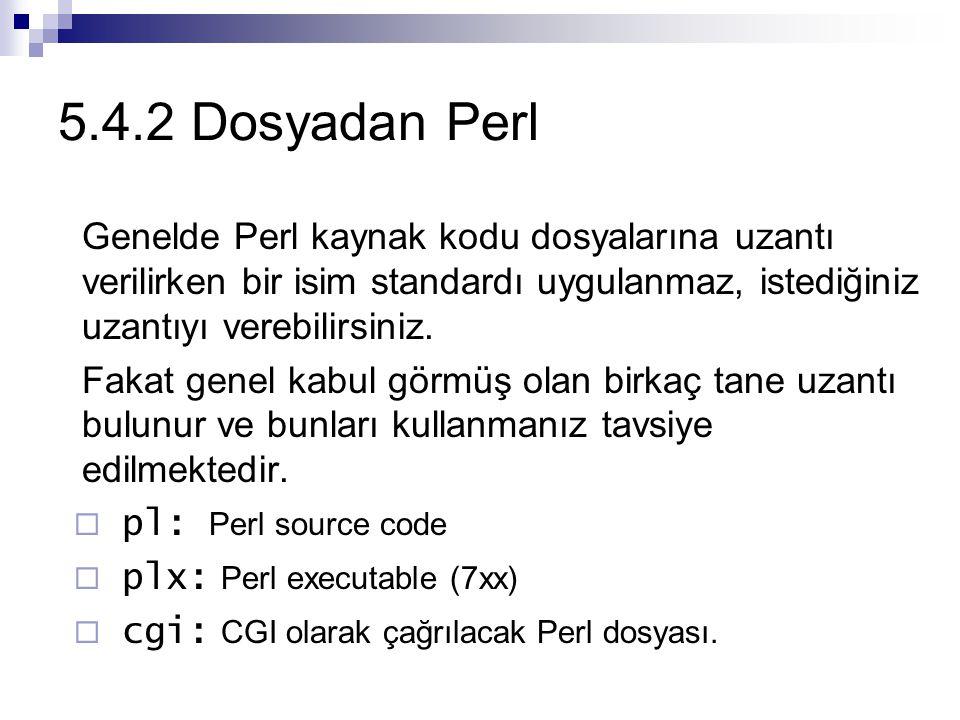 5.4.2 Dosyadan Perl Genelde Perl kaynak kodu dosyalarına uzantı verilirken bir isim standardı uygulanmaz, istediğiniz uzantıyı verebilirsiniz.