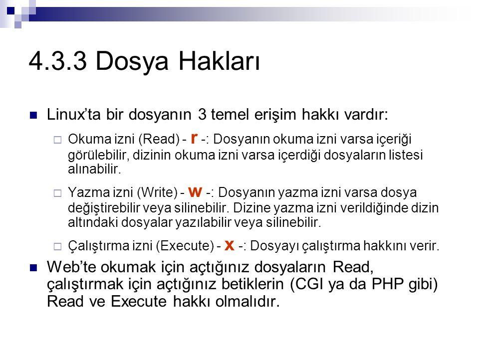 4.3.3 Dosya Hakları Linux'ta bir dosyanın 3 temel erişim hakkı vardır: