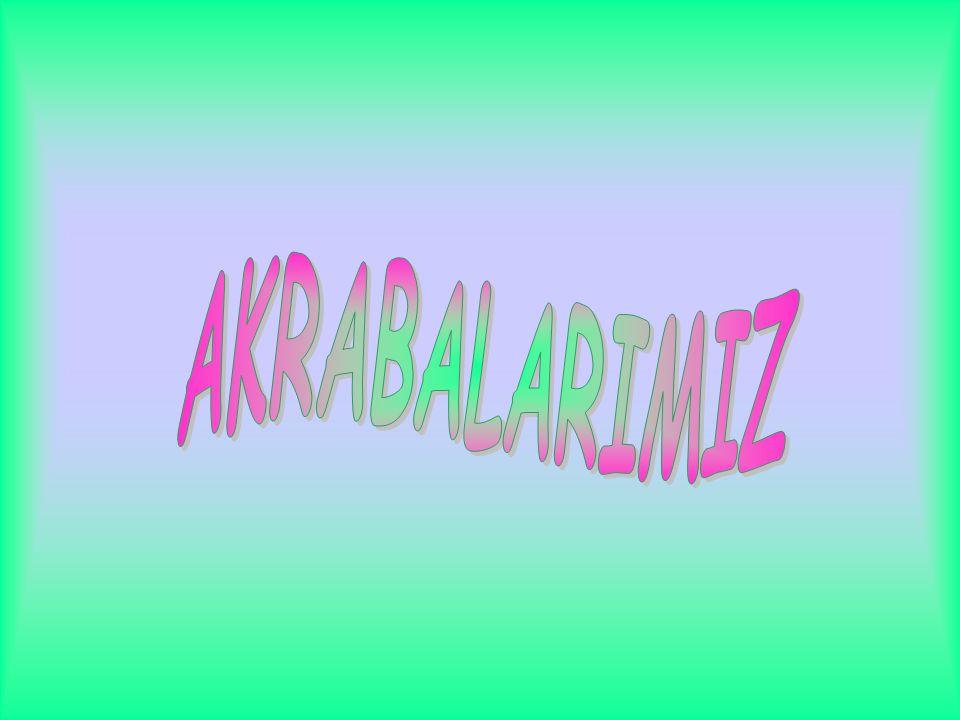 AKRABALARIMIZ