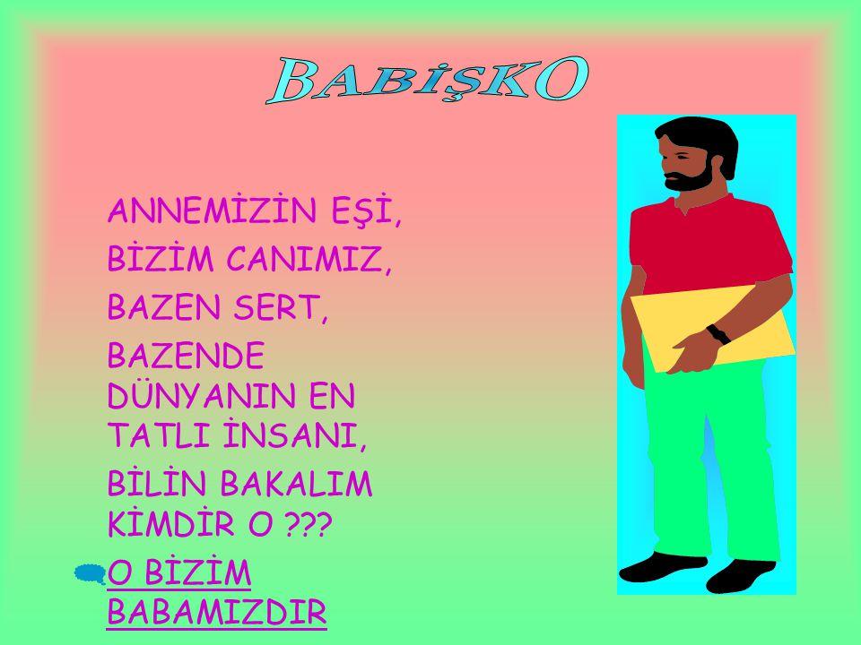 BABİŞKO ANNEMİZİN EŞİ, BİZİM CANIMIZ, BAZEN SERT,