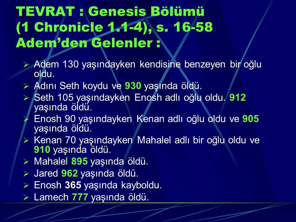 TEVRAT : Genesis Bölümü (1 Chronicle 1. 1-4), s