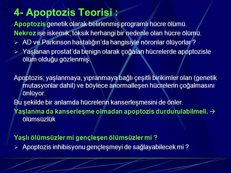4- Apoptozis Teorisi : Apoptozis genetik olarak belirlenmiş programlı hücre ölümü. Nekroz ise iskemik, toksik herhangi bir nedenle olan hücre ölümü.