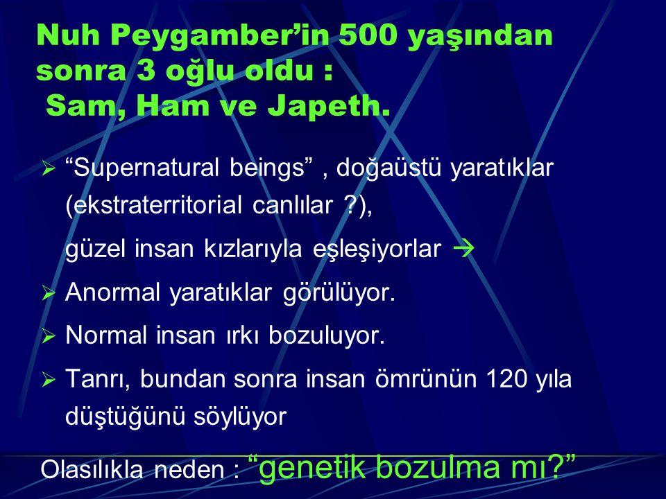 Nuh Peygamber'in 500 yaşından sonra 3 oğlu oldu : Sam, Ham ve Japeth.