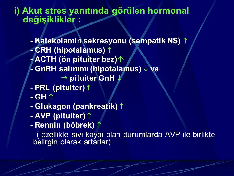 i) Akut stres yanıtında görülen hormonal değişiklikler :