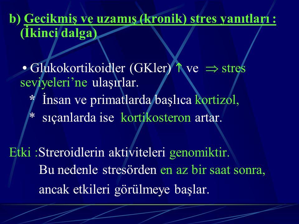 b) Gecikmiş ve uzamış (kronik) stres yanıtları : (İkinci dalga)