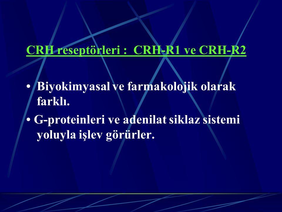 CRH reseptörleri : CRH-R1 ve CRH-R2