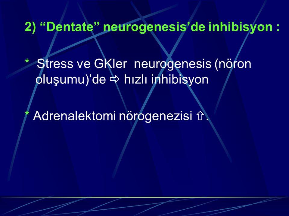 2) Dentate neurogenesis'de inhibisyon :