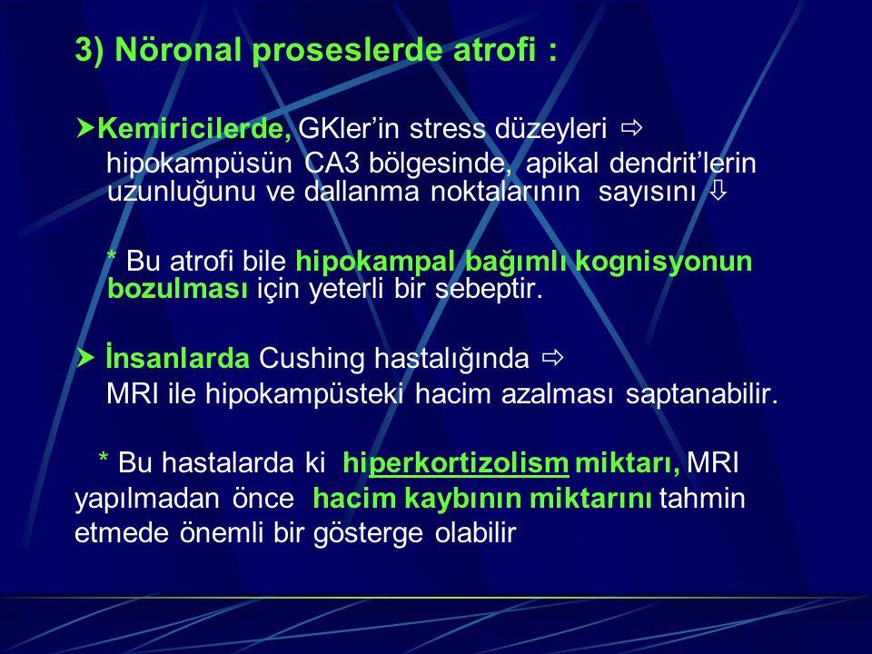 3) Nöronal proseslerde atrofi :