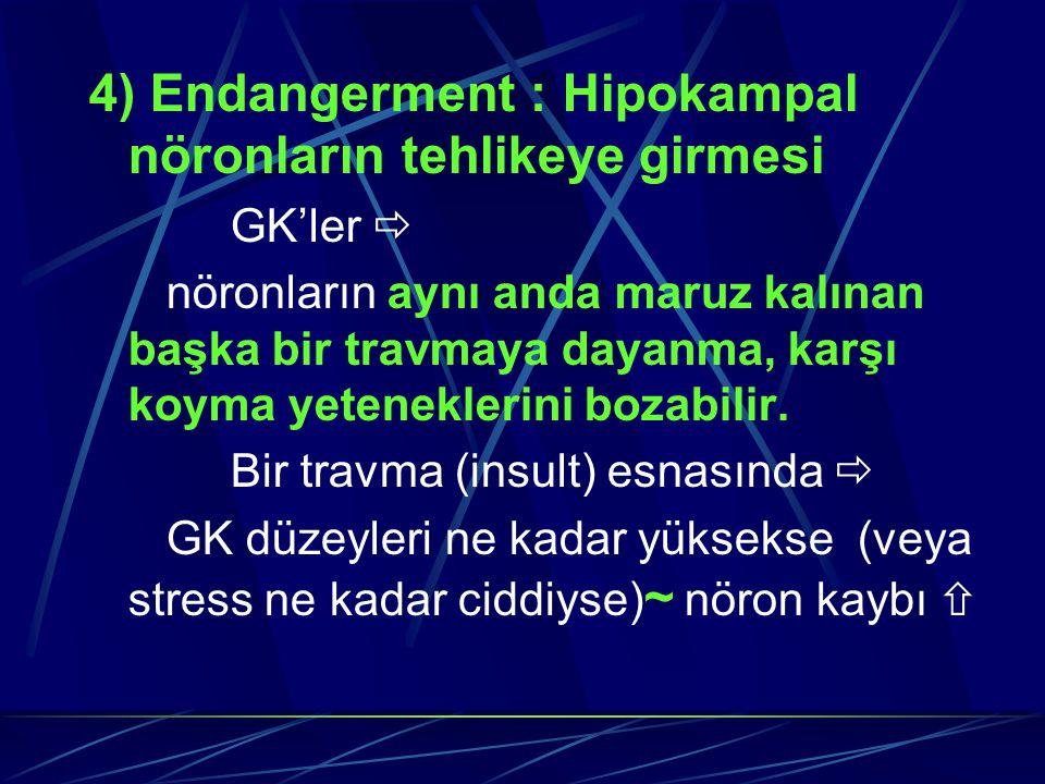4) Endangerment : Hipokampal nöronların tehlikeye girmesi