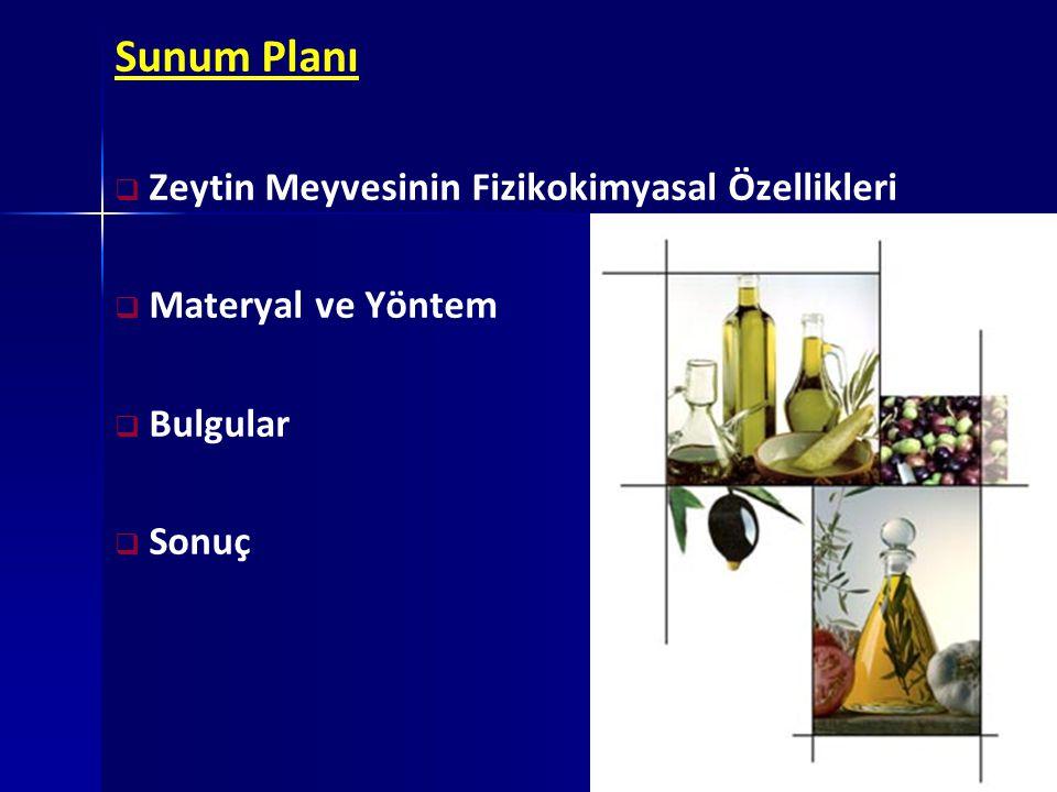 Sunum Planı Zeytin Meyvesinin Fizikokimyasal Özellikleri