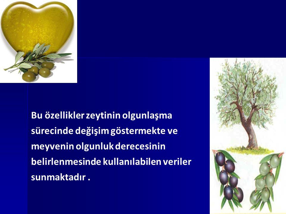 Bu özellikler zeytinin olgunlaşma sürecinde değişim göstermekte ve meyvenin olgunluk derecesinin belirlenmesinde kullanılabilen veriler sunmaktadır .