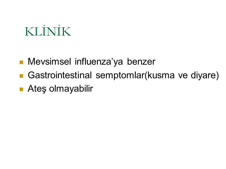 KLİNİK Mevsimsel influenza'ya benzer