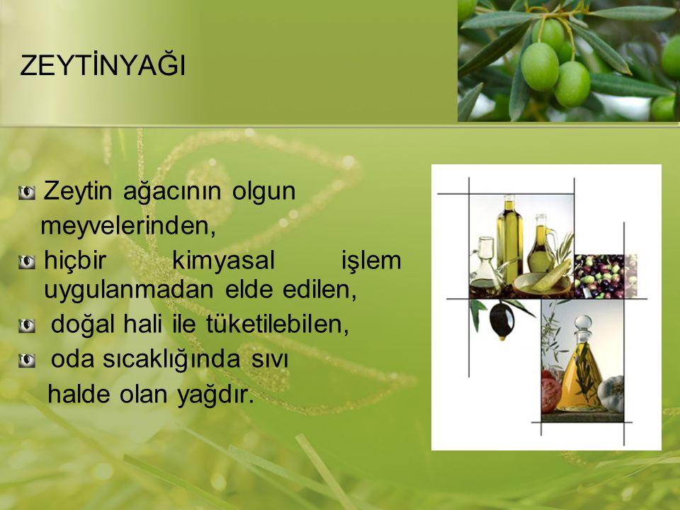 ZEYTİNYAĞI Zeytin ağacının olgun meyvelerinden,