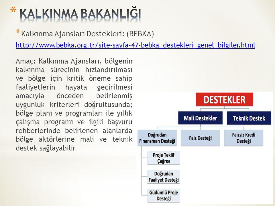 KALKINMA BAKANLIĞI Kalkınma Ajansları Destekleri: (BEBKA)