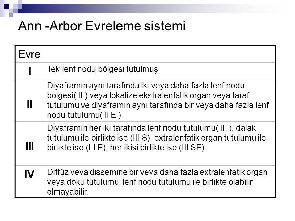 Ann -Arbor Evreleme sistemi