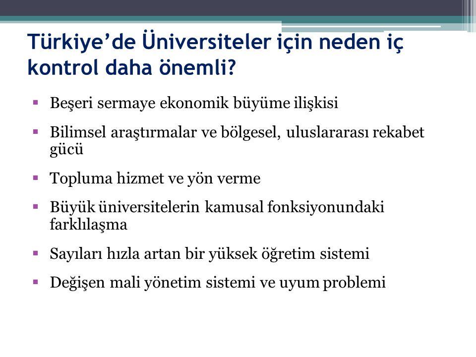 Türkiye'de Üniversiteler için neden iç kontrol daha önemli
