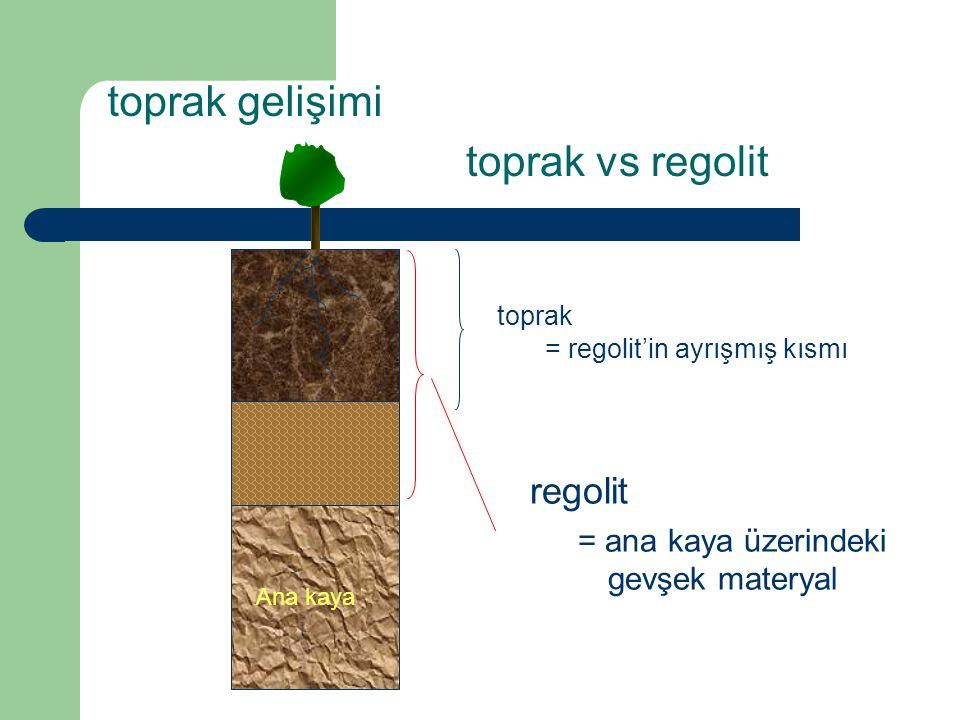 toprak gelişimi toprak vs regolit regolit