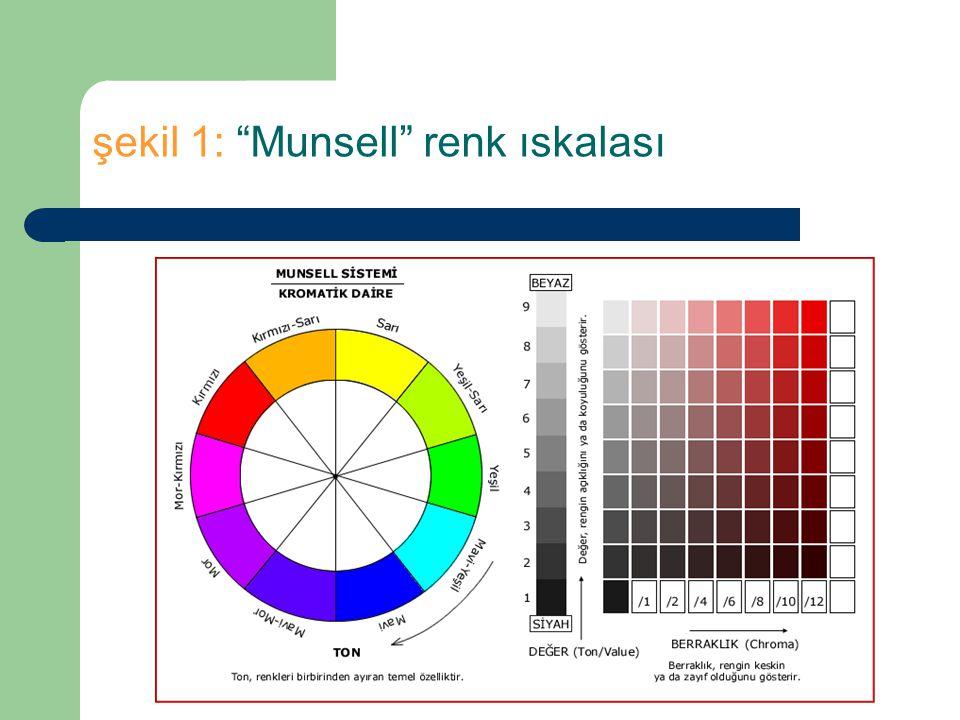 şekil 1: Munsell renk ıskalası