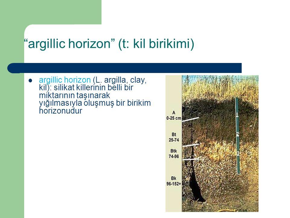 argillic horizon (t: kil birikimi)