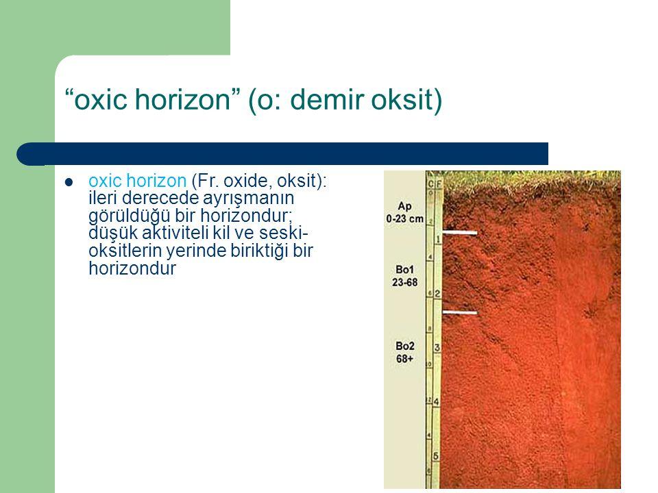 oxic horizon (o: demir oksit)