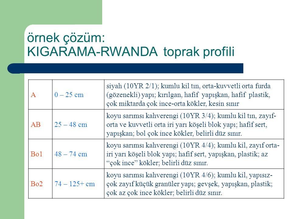 KIGARAMA-RWANDA toprak profili