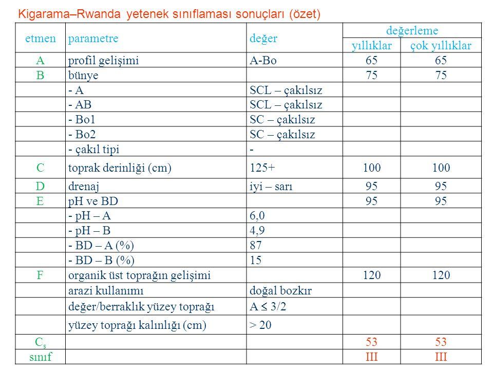 Kigarama–Rwanda yetenek sınıflaması sonuçları (özet)