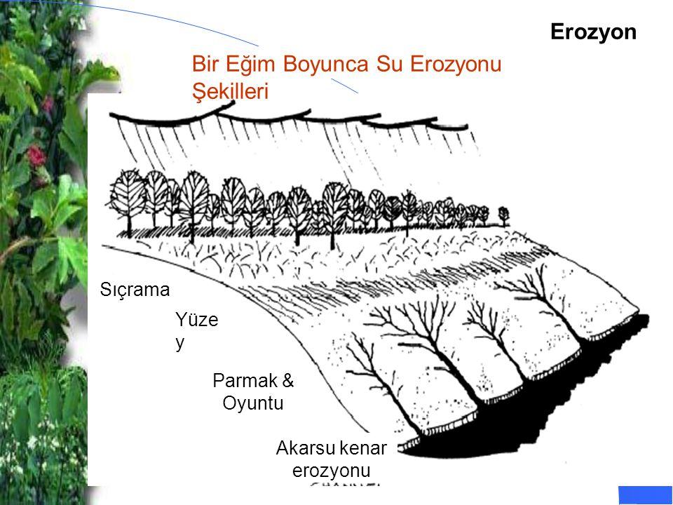 Bir Eğim Boyunca Su Erozyonu Şekilleri