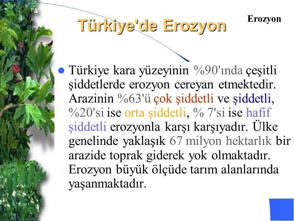 Türkiye de Erozyon Erozyon.