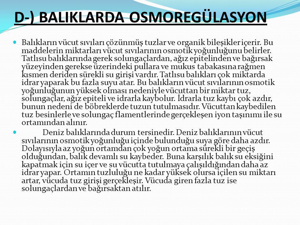 D-) BALIKLARDA OSMOREGÜLASYON