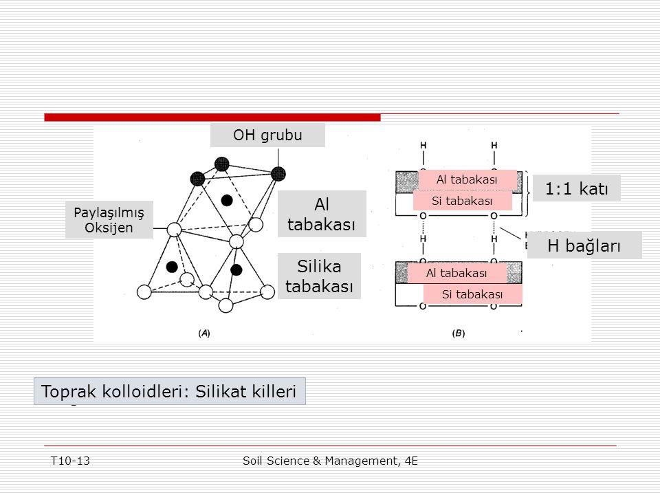 Toprak kolloidleri: Silikat killeri Figure 10-6