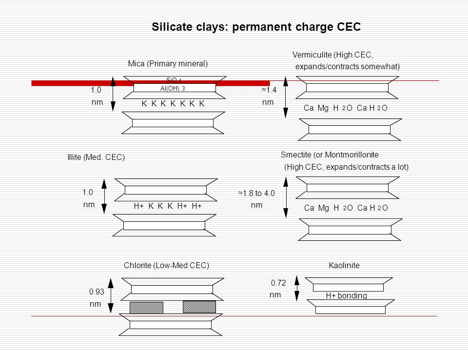 Silicate clays: permanent charge CEC