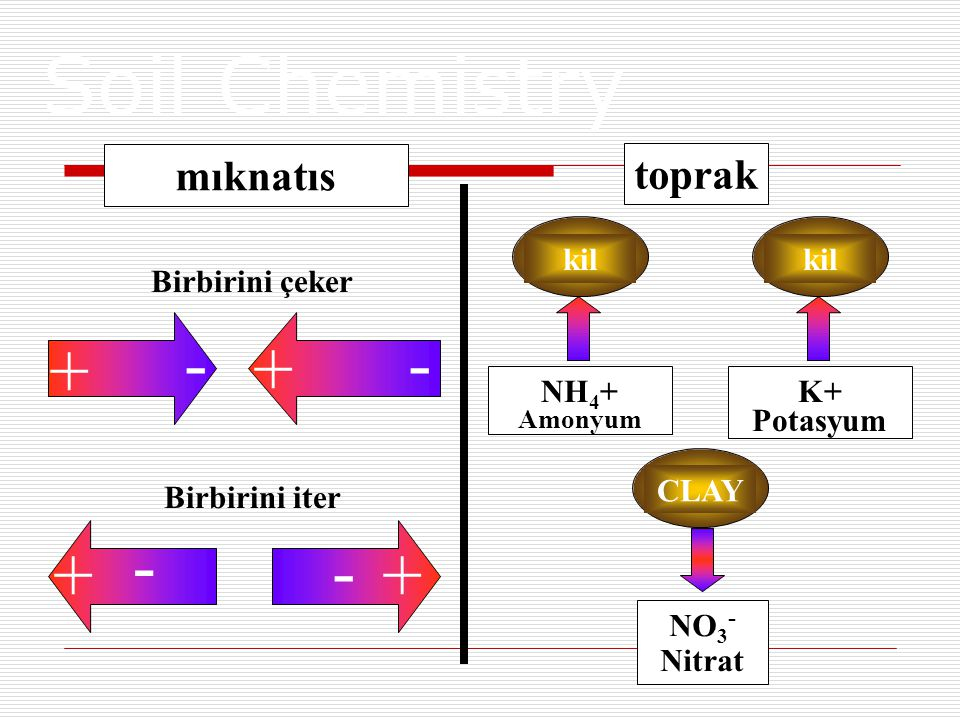 Soil Chemistry - + - + mıknatıs toprak kil Birbirini çeker NH4+ K+