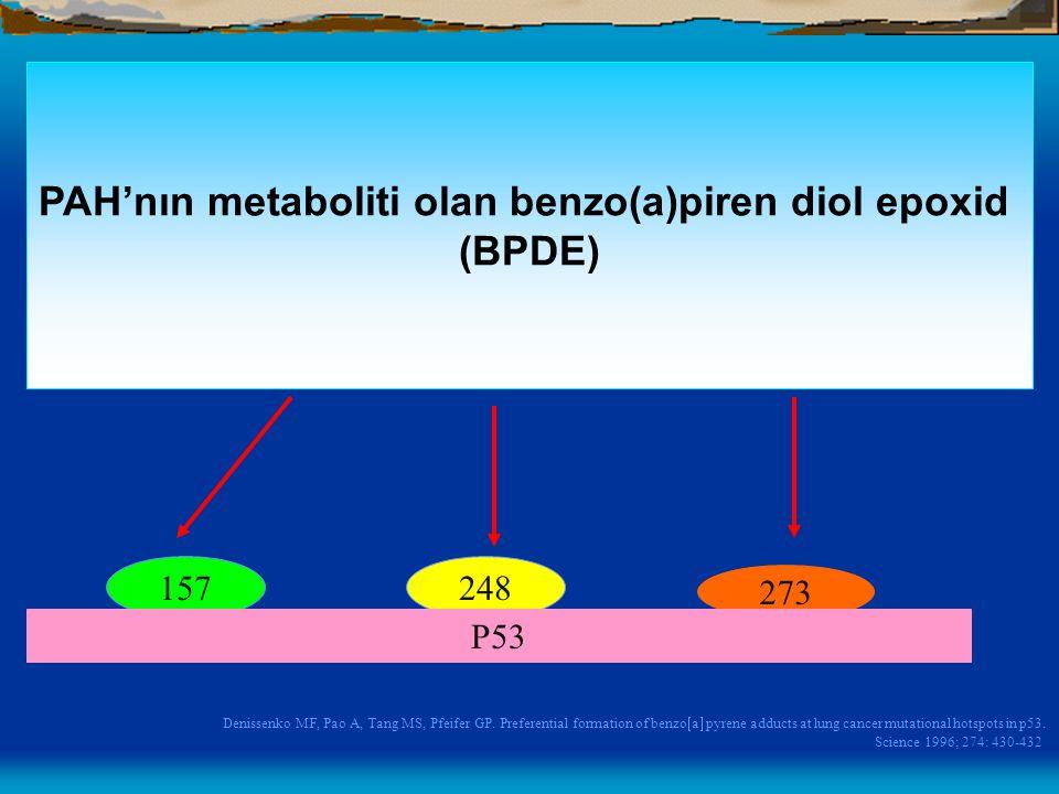 PAH'nın metaboliti olan benzo(a)piren diol epoxid
