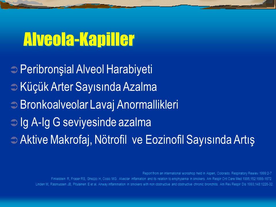 Alveola-Kapiller Peribronşial Alveol Harabiyeti