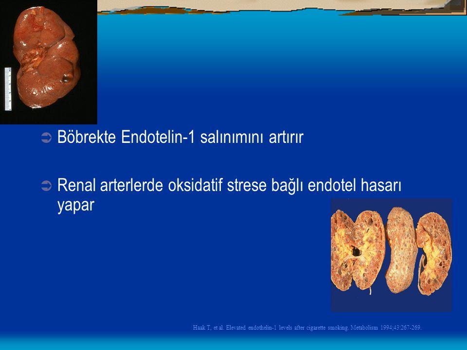 Böbrekte Endotelin-1 salınımını artırır