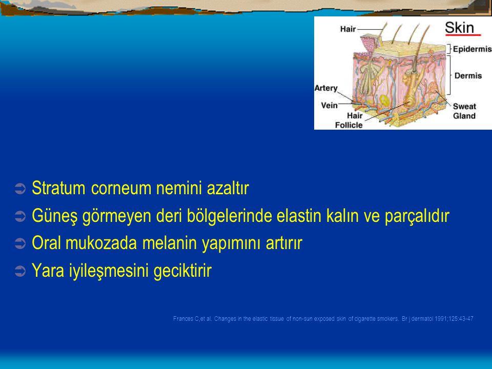 Stratum corneum nemini azaltır