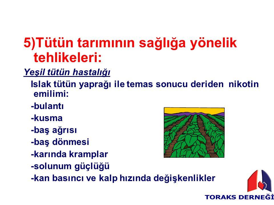 5)Tütün tarımının sağlığa yönelik tehlikeleri: