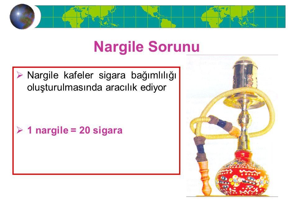 Nargile Sorunu Nargile kafeler sigara bağımlılığı oluşturulmasında aracılık ediyor.
