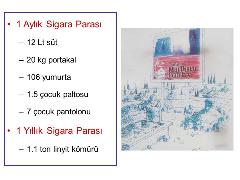 1 Aylık Sigara Parası 1 Yıllık Sigara Parası 12 Lt süt 20 kg portakal