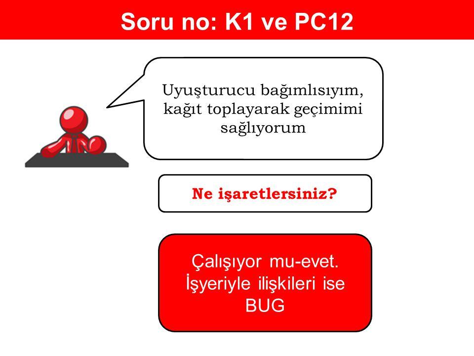 Soru no: K1 ve PC12 Çalışıyor mu-evet. İşyeriyle ilişkileri ise BUG
